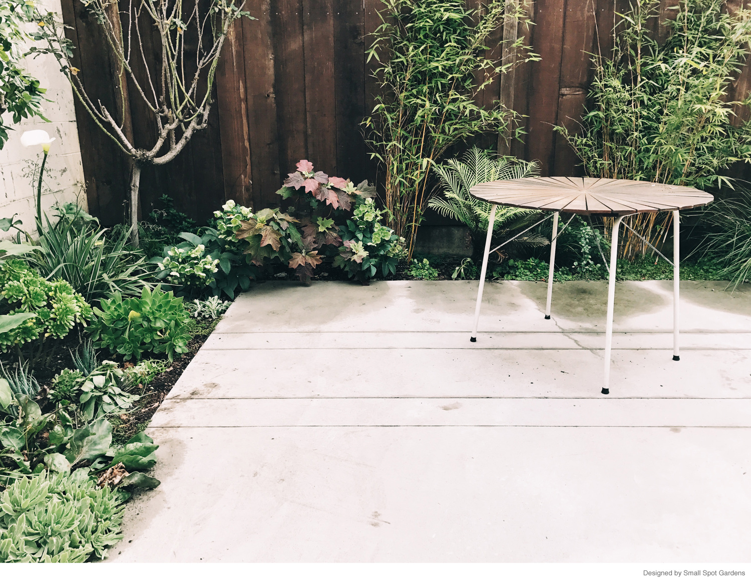 ethan bodnar is a landscape designer garden photographer and artist in oakland california hes worked with east bay wilds nursery small spot gardens - Garden Furniture East Bay